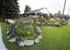 Vote for your choice in the Edmonton Journal Front Yards in Bloom 2013 Readers' Choice Award
