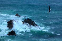 The wave which breaks ( Aomori ,Japan ) Author: Hitomi Zama.