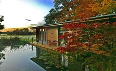Stay in Short Stay Homes New Forest Riverside Lodge and you get not only peace and seclusion but great sunsets and free fishing! Fishing Holidays, Tree Tent, Rural Retreats, Small Lake, Holiday Accommodation, Short Break, Amazing Sunsets, New Forest, Picnic Area