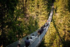 Capilano Suspension Bridge   Flickr - Photo Sharing!