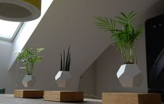 New Magnitized Planters Allow Your Garden to Levitate in the Air   Colossal   Bloglovin'