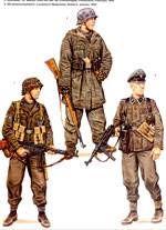 Unidades de Voluntarios de las Waffen-SS