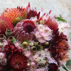 Growing and arranging beautiful Australian Native Flowers and all things Proteaceae. Australian Native Garden, Australian Native Flowers, Wax Flowers, Wedding Flowers, Wedding Bouquet, Late Summer Flowers, Sea Glass Crafts, Cascade Bouquet, Father Of The Bride