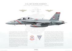 F/A-18F Super Hornet VFA-102 Diamondbacks, NF100 / 165878 / 2005 - A3 - Museum Quality Custom Aviation Prints