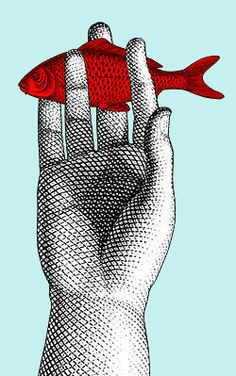 Fish in the hand