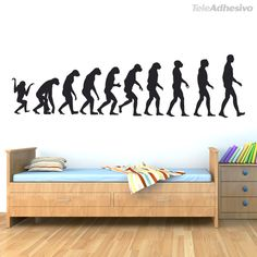 Wall Stickers Evolution