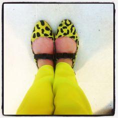 #msgm trousers and mu new mauro leone #shoes!