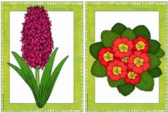 Ideenreise: Frühblüher