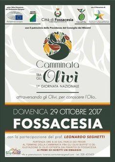 Fossacesia Camminata tra gli olivi: domani la prima edizione