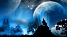 A anime wolf howling at the moon Wolf Wallpaper, Scenery Wallpaper, Wallpaper Pictures, Wallpaper Desktop, Desktop Wallpapers, Mobile Wallpaper, Wallpaper Quotes, Indian Pictures, Cool Pictures