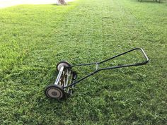 Jim's lawn mowing services in Perth cost is reasonable. We are professional lawn mowers in Perth. Get a FREE Quote for lawn mowing at 131 Visit. Reel Lawn Mower, Push Lawn Mower, Grass Mower, Mowing Services, Gardening Services, Gardening Tips, Types Of Grass, Gardens, Bricolage