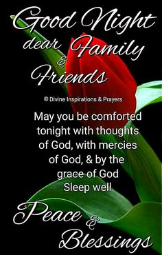 Good Night Thoughts, Good Night My Friend, Good Night Dear, Good Night Sweet Dreams, Good Night Image, Goid Night, Good Night Prayer Quotes, Good Night Messages, Night Quotes