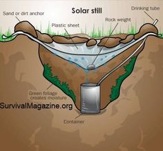 To make a solar still, dig a hole a foot or more into the ground and make it wide. Place a container in the middle that will collect water. Place green foliage in the hole. Place a tarp or sheet, preferably clear, over the hole and pin it at the rims with stakes, rocks, or dirt. Keep it a little loose and place a small stone in the middle directly above the container. As time goes by water will evaporate out of the ground & foliage, and collect on the tarp, then drain into the container.