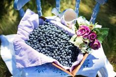 Lemon And Blueberry Cheesecake. Fancy making this Lemon and Blueberry Cheesecake, on a beautiful Sunday afternoon?Perfect recipe to eat out in the garden. Weight Loss Tea, Best Weight Loss, Lose Weight, Blueberry Varieties, Blueberry Delight, Homemade Coffee Creamer, How To Make Moonshine, Green Tea Diet, Vegetable Gardening