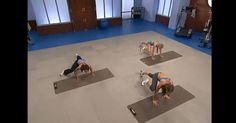 Todos a fazer exercicio e ficar em forma!