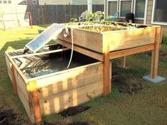 DIY Backyard Aquaponics System by Renewable DIY, via Kickstarter. #DIYbackyardaquaponics