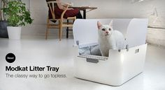 NEW! Modkat Litter Tray Available for Pre-order! • hauspanther