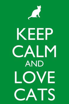 keep calm and love cats - I strongly agree :)