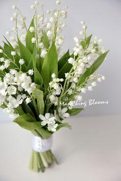 ManChing Blooms