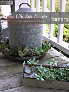 Flower Pots Discover Chicken Feeder Planters {Unique Flower Pots} - Cottage in the Oaks Chicken Feeder Planters - filled with succulents (now I just need to find some chickens and steal their feeders) Garden Planters, Succulents Garden, Planting Flowers, Diy Planters, Fall Planters, Succulent Plants, Potted Plants, Lawn And Garden, Garden Art