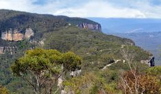 An exhilarating cycling route along a peninsula, Narrow Neck trail offers walking options and scenic views across Blue Mountains National Park, near Katoomba. Mountain Trails, Blue Mountain, Heritage Center, School Holidays, Top Of The World, Free Travel, Get Directions, Wilderness, Remote