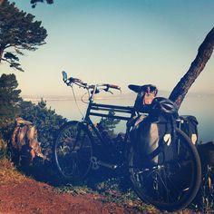 Touring Bike. I like the saddlebags