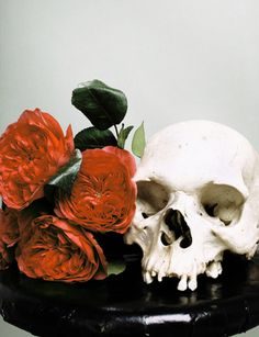 #red #flowers #flora #human #skull #death #bouquet +†+ wilddeathflowertrance ♥ @Sigrid N. Tenebris, i'm looking at you... +†+