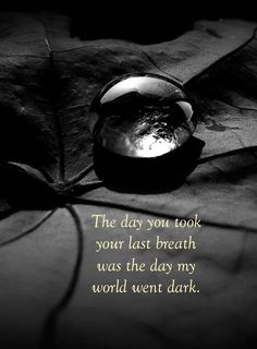 The day you took ...