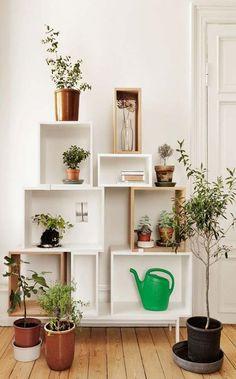 Estante-jardim. Foto: Studio Aflo