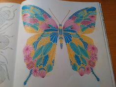 Finished: 11. 12. 2015; Source: Tropical Wonderland by Millie Marotta; Medium: Faber-Castell Polychromos, hard pastels Gioconda