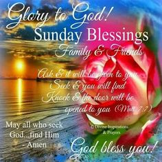 Have A Beautiful Sunday, Have A Blessed Sunday, Blessed Week, Sunday Love, Blessed Friday, Sunday Morning Quotes, Happy Sunday Morning, Happy Sunday Quotes, Weekend Quotes
