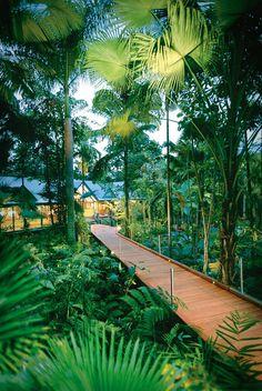 Silky Oaks Lodge - Australia Una puerta de entrada a ... | Alojamiento de lujo