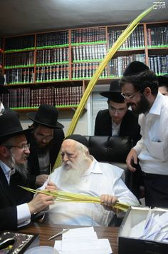 Photos: Inspecting Lulavim at Rav Chaim Kanievsky's Home On Rechov Rashbam in Bnei Brak Jerusalem Israel, Rabbi, Jewish Art, Torah, Marketing Digital, Adhd, Scriptures, Faces, Photos