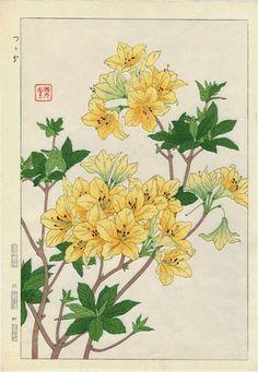 Kawarazaki Shodo - vintage woodblock print