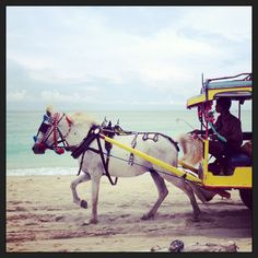 The only way to get around the Island, horse-cars or bicycles :) Gili Islands, Indonesia 2013