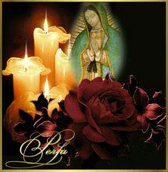 Imagenes+de+Rosas+Con+Animaciones+De+la+Virgen+De+Guadalupe