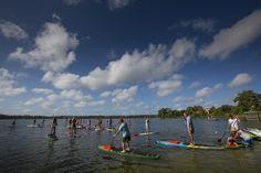 Standup Paddleboarding | Lake Virginia | Winter Park, FL