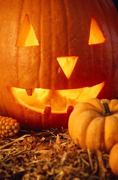 jack-o-lantern....pumpkin buying & carving tips for longer- lasting jack O' lanterns