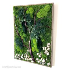 Moss, ferns, natural red branches and rocks create a forest within a reclaimed wood frame... Artisan Moss custom design