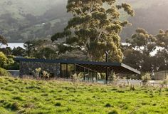 Annandale Olive Grove » Archipro