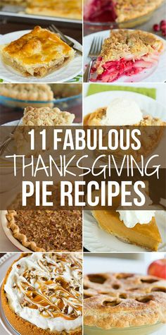 11 Amazing Thanksgiving Pie Recipes - Everything from classic pumpkin and pecan to splurges like caramel apple cheesecake pie!