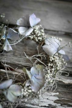 Brown And Grey, Blue Grey, Gray Color, Blue And White, Dried Flowers, Fresh Flowers, Black And White Background, Colour Board, Blue Tones