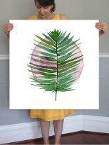 spotlight - sago palm Wall Art Prints by Kiana Mosley   Minted