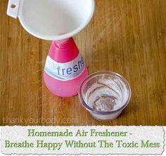 Citrus Mint Bathroom Air Freshener Recipe  Household  Air Best Bathroom Fresheners Design Inspiration