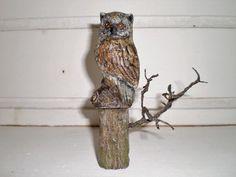 Waldbewohner Diorama, Owl, Bird, Animals, Animales, Animaux, Owls, Birds, Dioramas