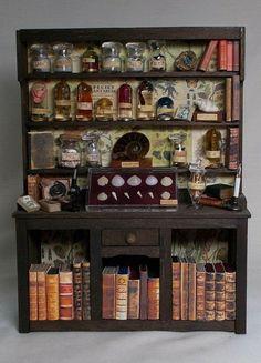 Vitrine Miniature, Miniature Rooms, Miniature Crafts, Miniature Houses, Miniature Furniture, Dollhouse Furniture, Haunted Dollhouse, Dollhouse Miniatures, Harry Potter Miniatures