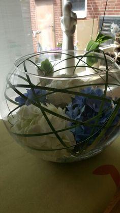 Blaue und weiße Hortensienblüten