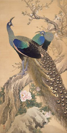 """A Pair of Peacocks in Spring"", 1901, Imao Keinen color on silk"