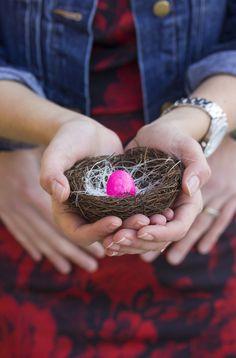 Announcement: Nest Addition   Newman's Nest #babyannouncement