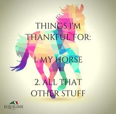 Things I'm thankful for: 1. My horse 2. All that other stuff. #equestrian #quotes #horse #equestrianstuff